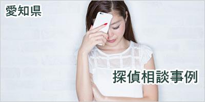 愛知県内の探偵相談と調査事例のご紹介