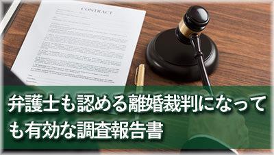 探偵豊田 浮気調査豊田 離婚裁判に有効な報告書報告書サンプル