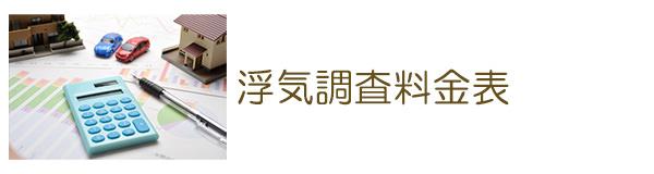 探偵豊田 浮気調査料金表